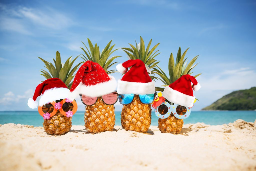 Latitude21Resorts.com, Latitude21 Resorts, Latitude 21 Resorts, Christmas pineapples chilling at the beach